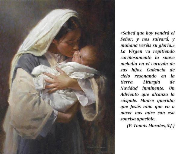 Felicitación Navidad (P. Morales)